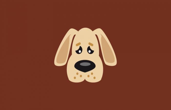 kundenportfolio_analyse_arme_hunde